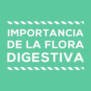 importancia de la flora intestinal